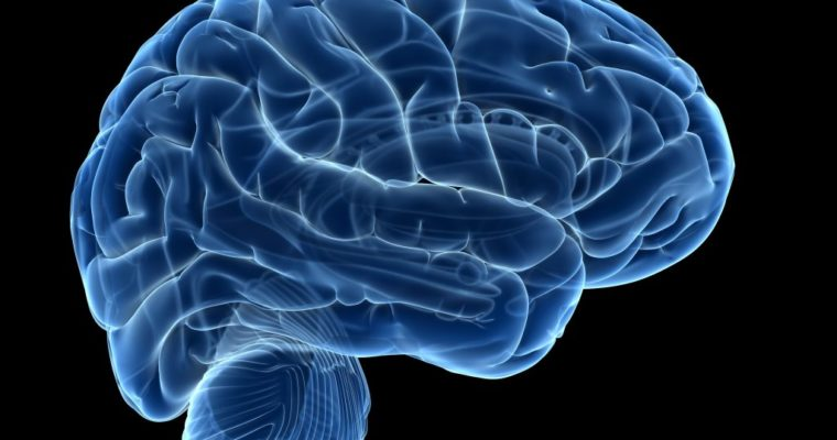 Want To Step Up Your BRAIN ? You Need To Read This First!