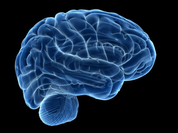 8 Want To Step Up Your BRAIN ? You Need To Read This First