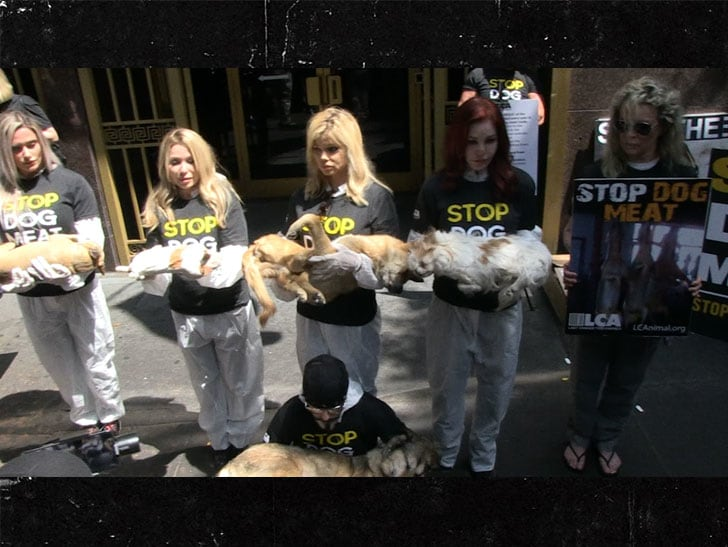 Kim Basinger and Priscilla Presley Protesting Korea's Dog Meat Trade